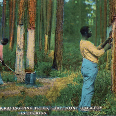 TurpentineWorkers1912 Wiki.jpg
